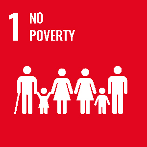 UN Goal - No poverty