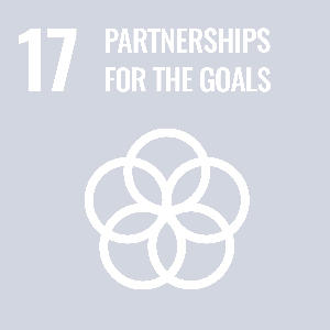 UN Goal - Partnerships for the goals